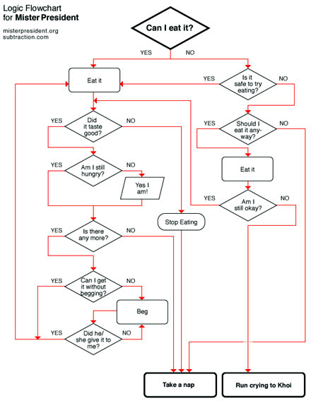 flow chart to help dog determine if he should eat something